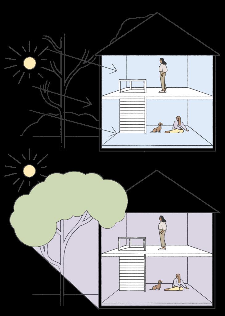 Kesällä kasvillisuus suojaa sisätiloja auringon paahteelta, mutta sallii talvella auringon lämmittää huonetiloja kun lämpöä tarvitaan.